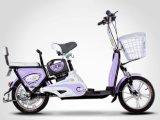 LED Light Motorized Bike (TDR1337Z)