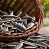 High Quality Sunflower Seeds 601 From Inner Mongolia