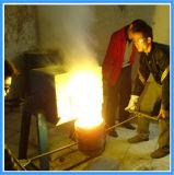 Melting Carbon Steel Induction Furnace (JLZ-110KW)