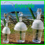 Enjoylife Starbuck Glass Cup with Free Shipping Cost