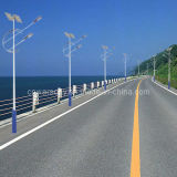 . 2013. New. Long Life Span CE Approval Solar Street Light Solar Lamp High Power LED Lamp (R15)