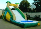 Inflatable Water Slide (CH-1007)