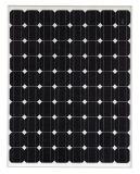 250W Mono Crystalline Solar Panel (SGM-250W/30V)