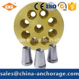 Prestressed Metal and Building Matching Part of Ground Anchorage