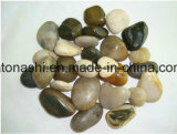 Polished Pebble Mosaic Tiles for Outside Flooring with Mixed Color