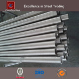 304 ERW Stainless Steel Round Pipe (CZ-RP14)