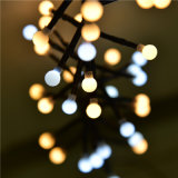 Ce&RoHS Approved 3m400LED Warm White and White Firecracker LED String Light