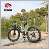 2017 Modern MID Drive Power Bicycles Cruiser Bikes