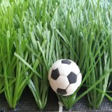Cheap Price Artificial Grass for Football Field, Soccer Field and Futsal