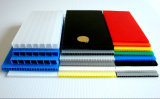 Colorful Hollow PP Sheet Plastic Sheets Board