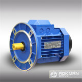 Top Quality High Performance AC Gear Motor