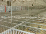 Hot DIP Galvanized Steel Grating Ceiling