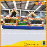 Indian Totem Inflatable Fun City Playground (AQ01237)