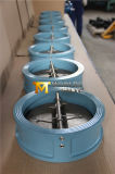 Ductile Iro Check Valve with CE&ISO Approved (H77X-10/16)