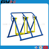 Outdoor Playground Equipment with Double Air Walker