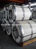SGCC- Galvanized Steel Coil