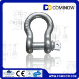 G209 Screw Pin Anchor Shackle Us Type Drop Forged Galvanized / Bow Shackle / Alloy Chain Shackle