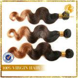 8A Grade 100% Virgin Human Hair T Tone Color Full Cuticle Hair Body Wave (TFH-NL81)