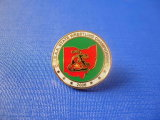 Coin Soft Enamel Badge, Competition Lapel Pin (GZHY-FFL-005)