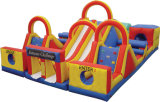 Large Recreational Inflatable Bouncer for Kids (CZ-1001)