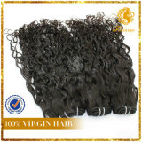 Italy Wave 100% Unprocessed Malaysia Human Hair Extension- (TFH-NL0017)