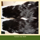 32 Inch Human Hair Extensions Virgin Remy (ZYWEFT-123)
