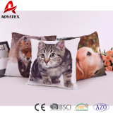 Micromink Cute Custom Digital Printed Decorative Sofa Cushion