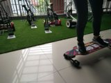 China Produce Electric Skateboard Electric Rideable Products