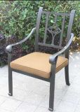 Concise Garden Stationary Dining Chair Furniture