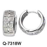 Latest Design 925 Silver Earrings Fashion Jewelry (Q-7318W)