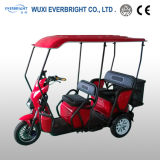 En12184 Electric Passenger Tricycle for Home