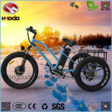 3 Wheel 26inch 500W Fat Tire Cargo Electric Tricycle