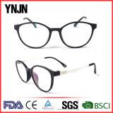 Hot Selling Newest Fashion Plastic Frame Glasses