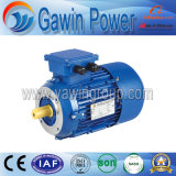 Hot Sales Y2 Series Three-Phase Induction Motor