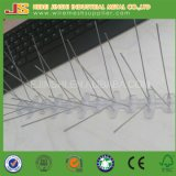 50cm Length Bird Devices/Anti-Bird Spikes Made in China