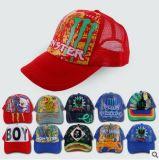 Custom Logo Printed Trucker Cap, Sport Cap, Mesh Cap, Baseball Cap, Summer Cap in Various Material, Size and Design