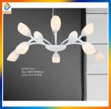 Flower Design Modern LED Chandelier Light, Fashion Decorative Pendent Lamp
