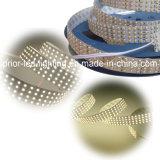 4 Rows 3528 LED Strip / 1800LEDs 5m LED Light Strip (PR-FS3528W360-24)