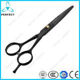 High Quality Black Handle Straight Blade Professional Pet Scissors