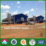 Prefabricated Steel Structure Layer Chicken House Shed