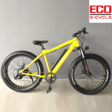 Lithium Battery and Fat Tire Electric Bicycle
