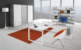 Factory Price Guangdong Office Manufactor Office Table Models Specification (SZ-OD379)