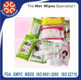 Hot Sale Car Glass Cleaning Disposable Wet Wipes