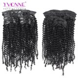 Yvonne 7 Pieces/Set 18 Clip Brazilian Kinky Curly Clip in Human Hair Extensions