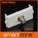 Earphone Wall Plate, AV Face Plate (9.1121)