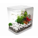 DIY Decorative Table Top Acrylic Marine Fish Tank