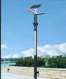 5-10m Solar Graden LED Light