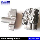 Aluminum Die Casting (BIXDIC2011-9)