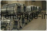 Cold Rolled Stainless Steel Coil and Stainless Steel Sheet