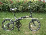 Folding Bicycle/Bike (FD-001)